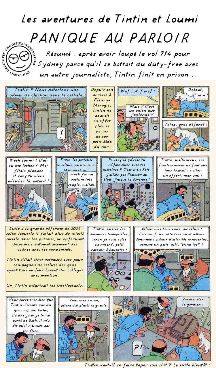 TintinCaricatureComplet